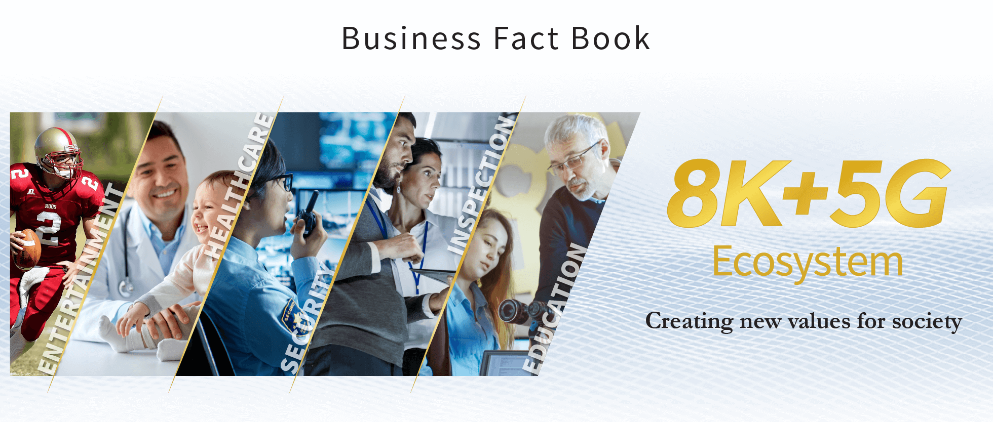 Business Fact Book: 8K + 5G Ecosystem